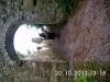ganztagestour20-10-12burggeroldseck-071