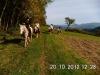 ganztagestour20-10-12burggeroldseck-027wanderreiten